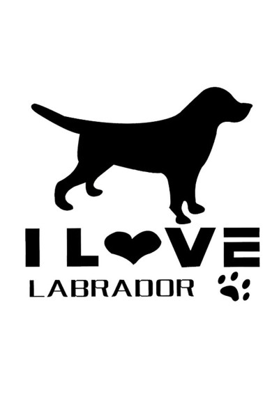 Sticker Auto I Love Labrador