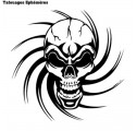 Tattoo Tete de Mort Tribal Ephémère