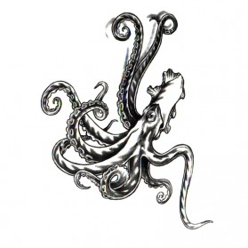 Tatouage Ephémère Temporaire Calamar